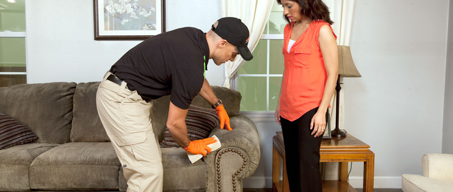Malibu, CA carpet upholstery cleaning